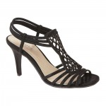 Simple Ladies Occasion Shoes